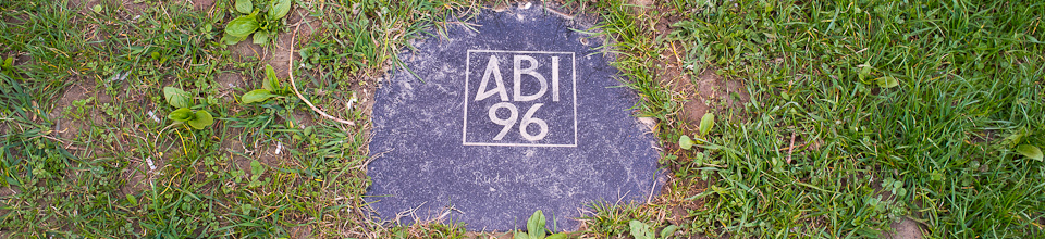 Abi 96