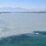 Der kalte Rhein taucht buchstäblich im wärmeren Bodensee ab.