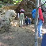 …der hier auf dem Sandstein ruht, der einst Meeresstrand mit Südseeklima war.