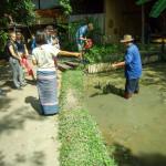 Rice_Farming1