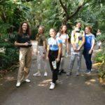c_Im Dschungel