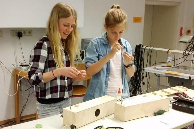 Bau von Monochorden – der etwas andere Physik-Unterricht